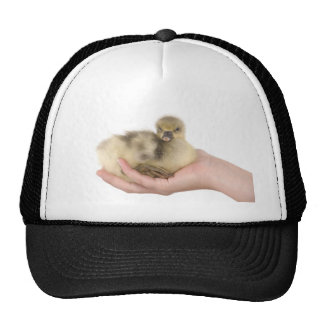 little goose in one hand gorro de camionero