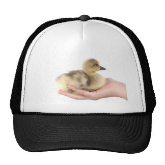little goose in one hand mesh hats