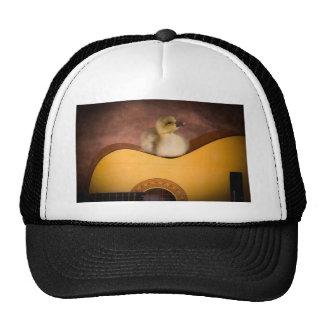 little goose on a guitar gorros bordados