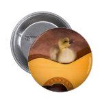 little goose one has guitar pinback button