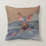 Little gray Sphynx kitten Pillows