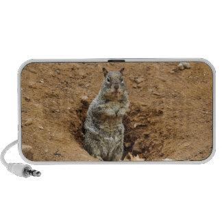 Little Gray Squirrel Mp3 Speaker