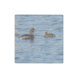 Little Grebe and Chick Stone Magnet