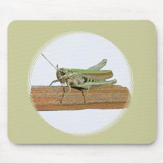 Little Green Grasshopper Cartoon Mouse Pad