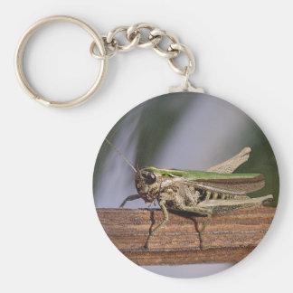 Little Green Grasshopper Keyring Keychain