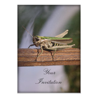 Little Green Grasshopper Party Event Card