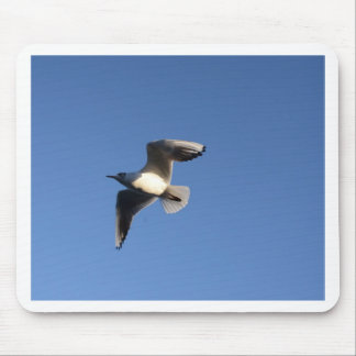 Little Gull Mouse Pad