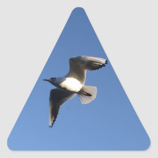 Little Gull Triangle Sticker