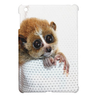 Little Guy iPad Mini Cases