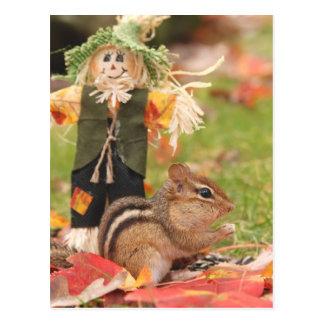 Little Harvest Chipmunk Postcard