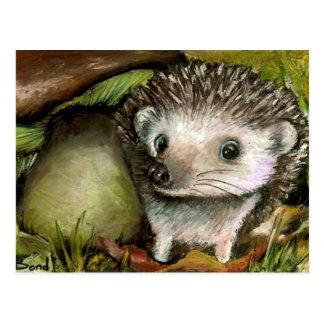 Little hedgehog postcard