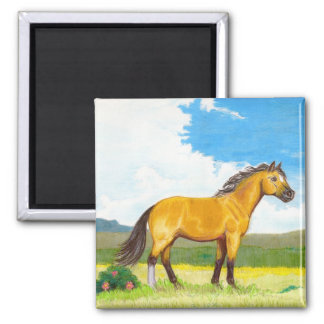 Little Horse on the Prairie Magnet