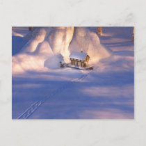 Little House in the Snow Postcard