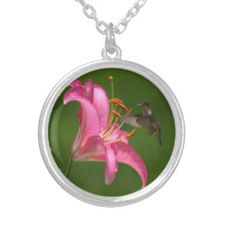 Little hummingbird silver plated necklace
