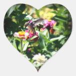 Little Hummingbird Stickers