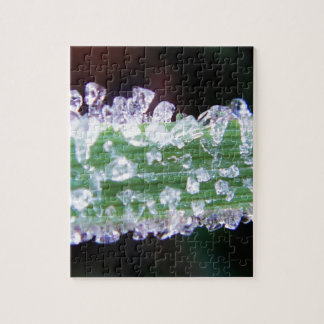 Little ice cubes (frost) on green grass puzzle