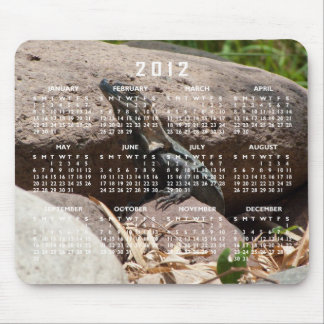 Little Iguana on the Rocks; 2012 Calendar Mouse Pad
