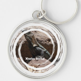 Little Iguana on the Rocks Mexico Souvenir Keychains