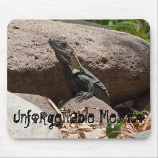 Little Iguana on the Rocks; Mexico Souvenir Mouse Pad