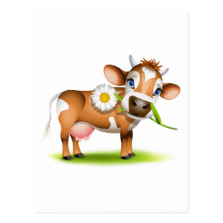 Little Jersey cow eating daisy Postcard