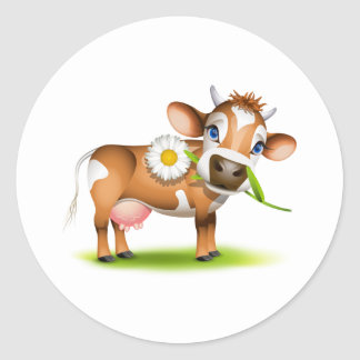 Little Jersey cow eating daisy Round Sticker