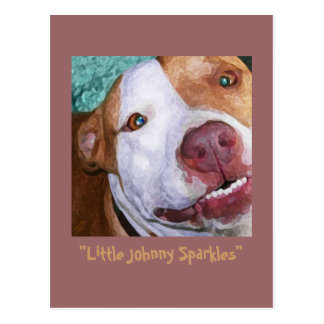Little Johnny Sparkles Postcard
