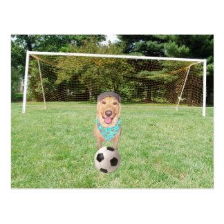 Little Kid's Soccer Postcard