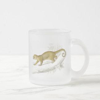 Little kinkajou honey bear pet vintage drawing frosted glass coffee mug