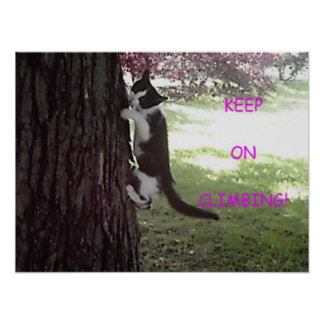 Little Kitten Big Tree Poster