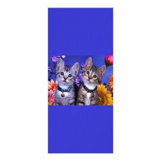 little_kittens 27 cute adorable fuzzy pets cats custom rack cards