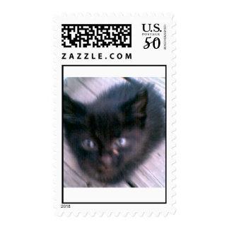 little kitty 060507 postage