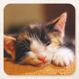 Little Kitty Sleeping Square Paper Coaster