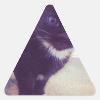 Little Kitty Triangle Sticker