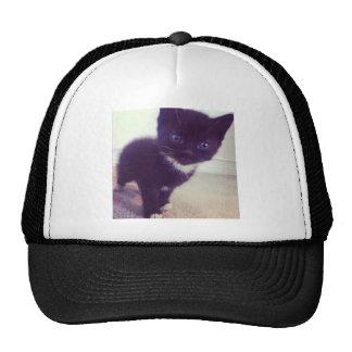 Little Kitty Trucker Hat