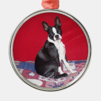 Little Lady Lola bug Metal Ornament