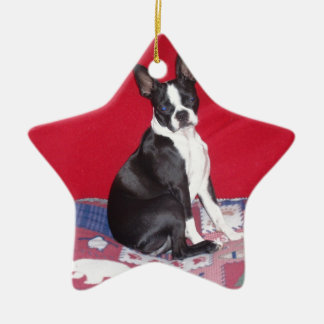 Little Lady Lola bug Double-Sided Star Ceramic Christmas Ornament