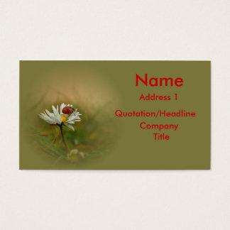 Little ladybug business card