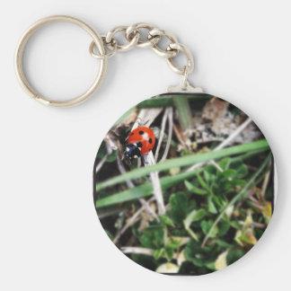 Little Ladybug Keychain