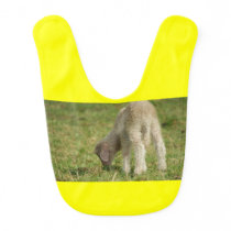 Little lamb, baby sheep baby bib