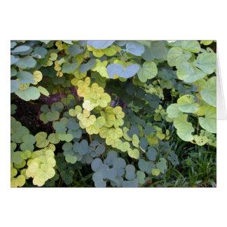 Little Leaves Card
