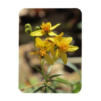 Little Lemon Head Wildflowers Magnet