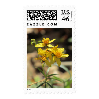 Little Lemon Head Wildflowers Postage Stamps
