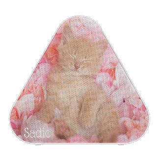 Little Linus Pink Floral Kitten Speaker