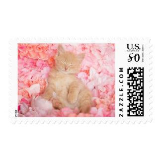 Little Linus Pink Floral Postage