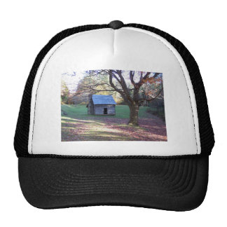 little log cabin trucker hat