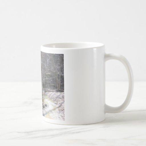 Little Lost Creek CA Coffee Mugs