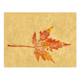 """""""Little Maple Leaf"""" Country Roads Postcard"""