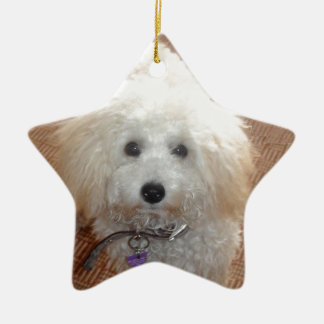 Little Miss Pretty Poodle Ceramic Ornament