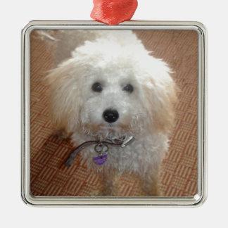 Little Miss Pretty Poodle Metal Ornament
