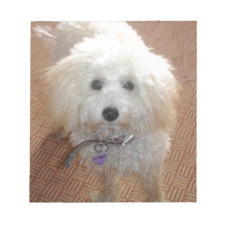 Little Miss Pretty Poodle Notepad
